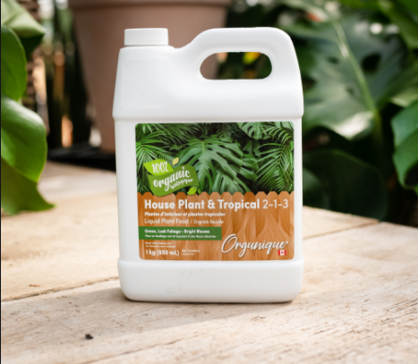 plant fertilizer NZ